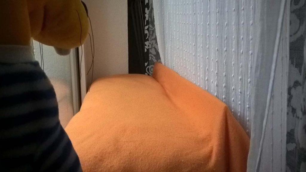 Popo Überhang Sicherung: Nun kann Luzi von ihrem Fensterplatz nicht mehr herunterfallen