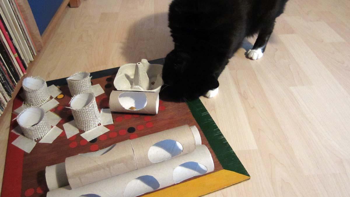 Katzen Fummelbrett für Einsteiger: mit Klo- und Küchenpapierpapprollen
