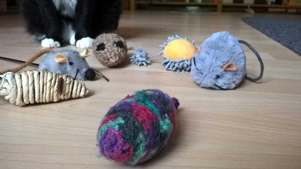 Katze Luzi und ihre Spielmäuse, die zum Teil zu ihrer Katzen Erstausstattung gehörten