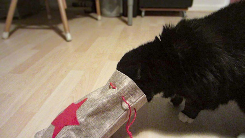 Luz und ihr Jutesack, gefülllt mit Katzengrasheu und Leckerli. Weihnachten mit Katze!