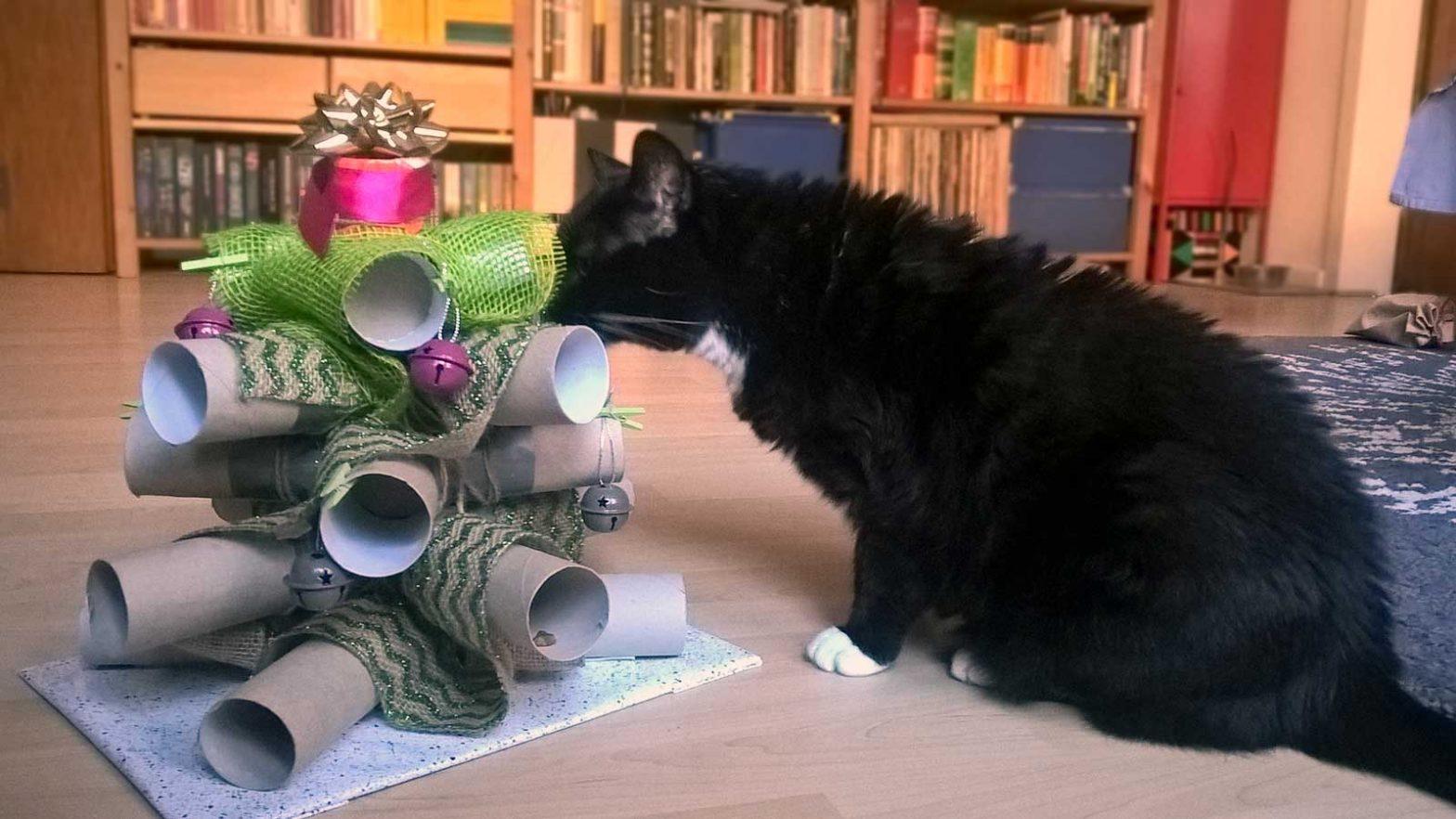 Luzis Weihnachtsbaum für Katzen
