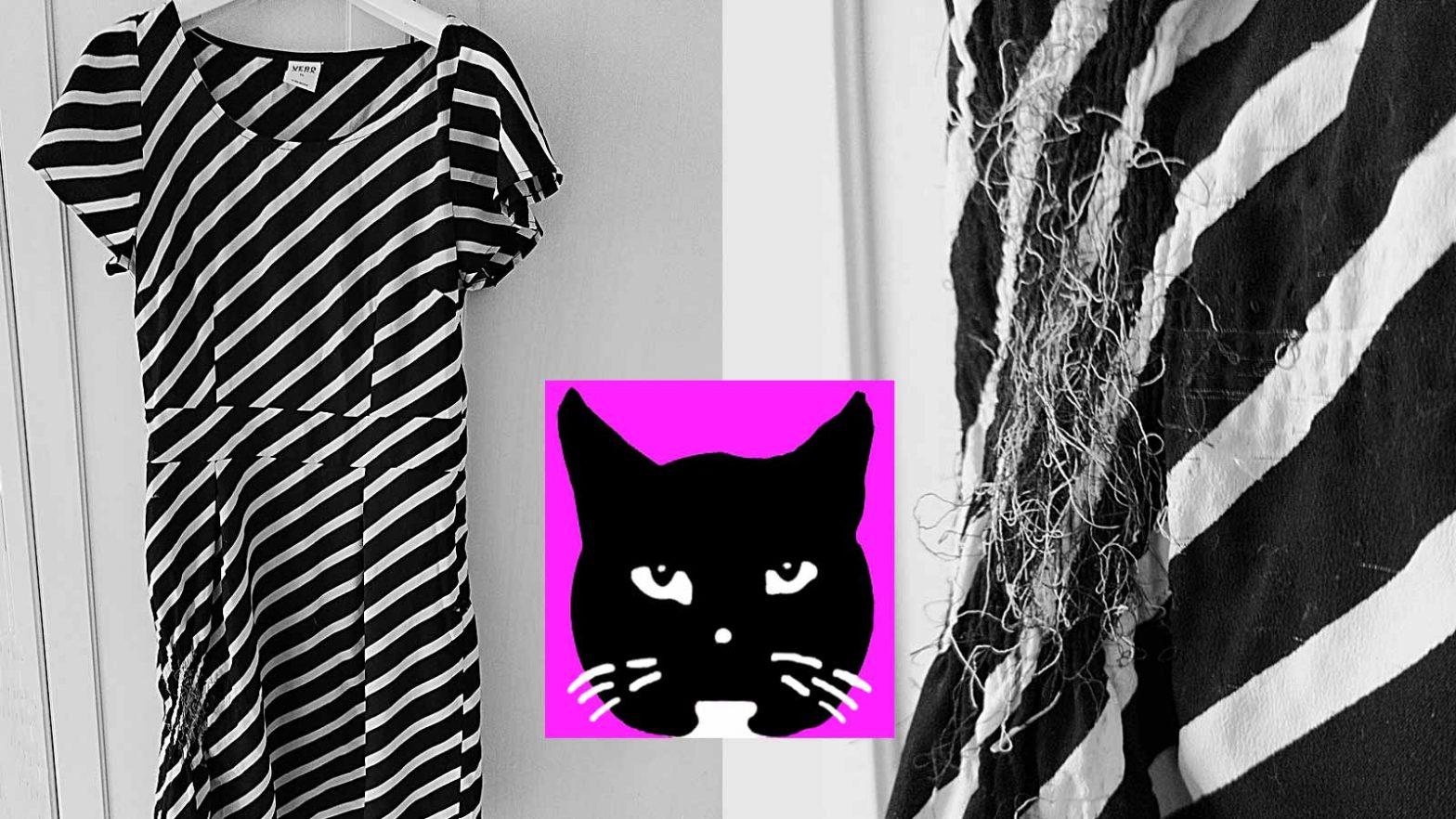 Katze zerstört alles? Luzi schrottet nur gewisse Stoffe, bevorzugt gestreifte Kleider