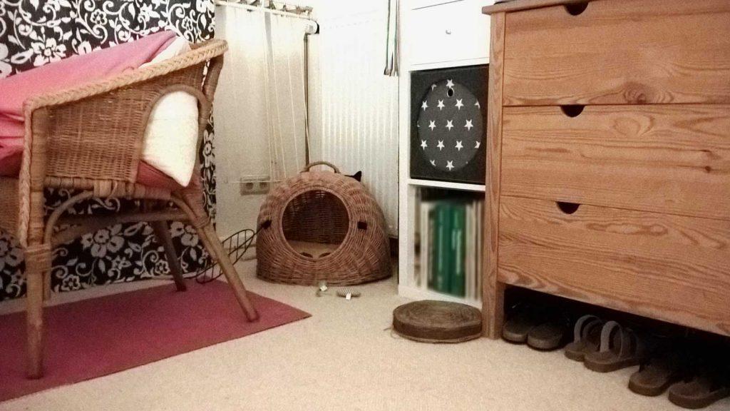 Katze Luzi spielt Verstecken - hinter ihrer neuen Weidenhöhle