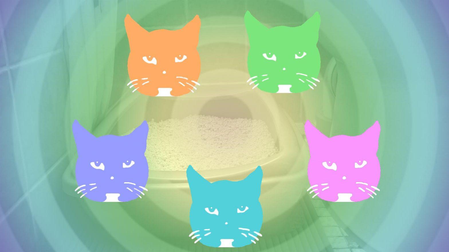 Luzi trainiert Synchron-Geschäfte für die Cat Olympics