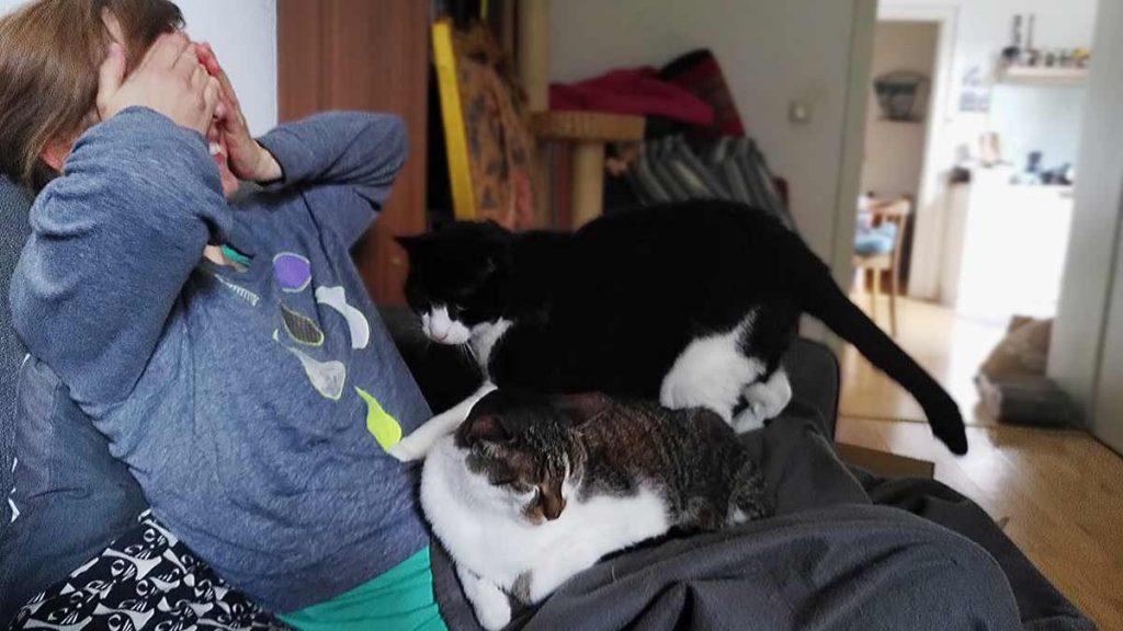 Romy mit ihrem liebsten Topping: die Kater Joschi und Cobi auf ihrem Schoß. foto: Romy